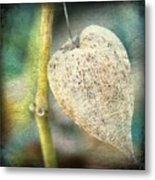 Skeleton Physalis Metal Print