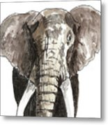 Sketch Elephant Metal Print