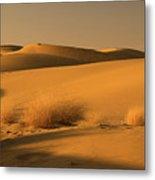 Skn 1124 Desert Landscape Metal Print