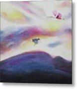 Sky And Birds Metal Print