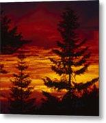 Sky Of Fire Metal Print