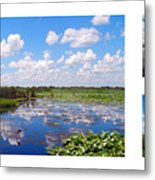 Skyscape Reflections Blue Cypress Marsh Florida Collage 1 Metal Print