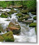 Slate Creek, Nez Perce National Forest, Idaho Metal Print