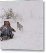 Sled Before The Dogs? Metal Print