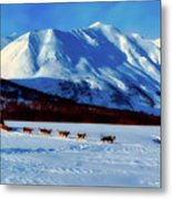 Sledding In Russia Metal Print