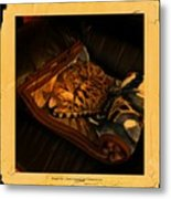Sleeping Cat Digital Painting Metal Print