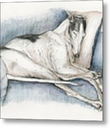 Sleeping Greyhound Metal Print