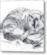 Sleeping Jago Metal Print