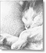 Sleeping Sadie Metal Print