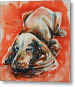 Sleeping Spaniel On The Red Carpet Metal Print