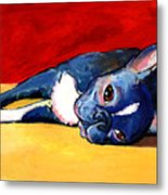 Sleepy Boston Terrier Dog  Metal Print