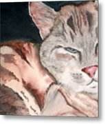 Sleepy Cat Metal Print