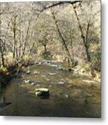 Sleepy Creek Metal Print