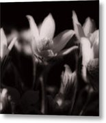 Sleepy Flowers Metal Print