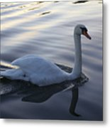 Sliting The Dream Metal Print