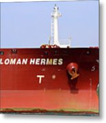 Sloman Hermes Detail 051718 Metal Print