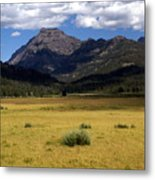 Slough Cree Vista Metal Print