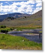 Slough Creek Angler Metal Print by Marty Koch