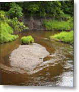 Slow River In Deep Forest Landscape Metal Print