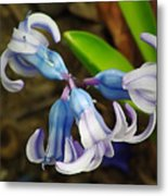 Small And Lovely Metal Print