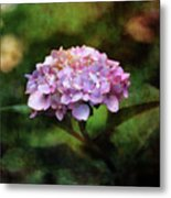 Small Blossoms 2388 Idp_2 Metal Print