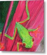 Small Frog Metal Print