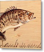 Small Mouth Bass Metal Print
