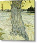 Small Pear Tree In Blossom Arles, April 1888 Vincent Van Gogh 1853  1890 Metal Print