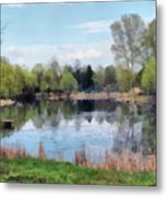 Small Pond In Tomilino Metal Print