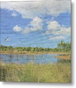 Small Pond With Weathered Wood Metal Print