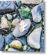 Small Rocks On The Beach Metal Print