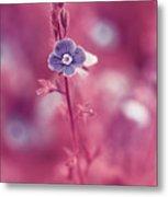 Small Romantic Violet Flower Metal Print