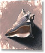 Small Seashell Metal Print by Timothy Jones