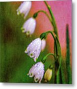 Small Signs Of Spring Metal Print