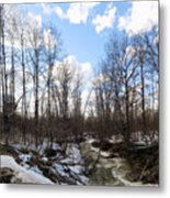 Small Stream In Spring Metal Print
