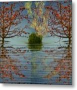 Small  Wood Lake.face To Face Metal Print