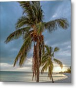 Smathers Beach Coconut Sunset Metal Print