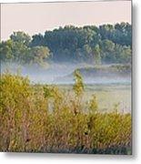 Smokey Marshland Metal Print