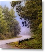 Smokey Mountain Road Metal Print by Shirley Dawson