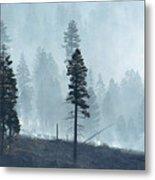 Smokey Trees Metal Print