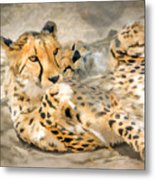 Smokin Cheetah Love Metal Print