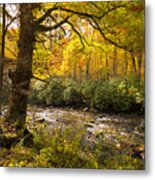 Smoky Autumn Metal Print
