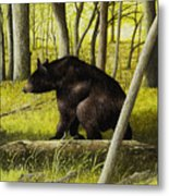 Smoky Mountain Bear Metal Print