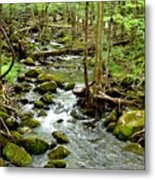 Smoky Mountain Stream 1 Metal Print