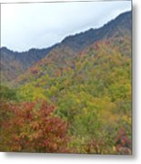 Smoky Mountains National Park 4 Metal Print