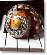 Snail Shell On Keys Metal Print
