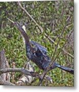 Snake Bird Metal Print