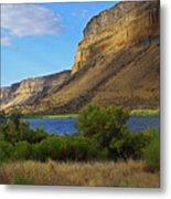 Snake River Canyon Metal Print