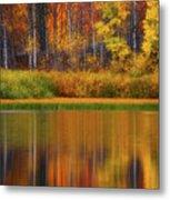 Snake River Fall Colors Metal Print