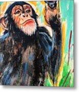Snooty Monkey Metal Print